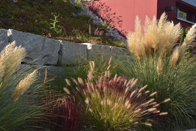 bepflanzungen, Gartengestaltung